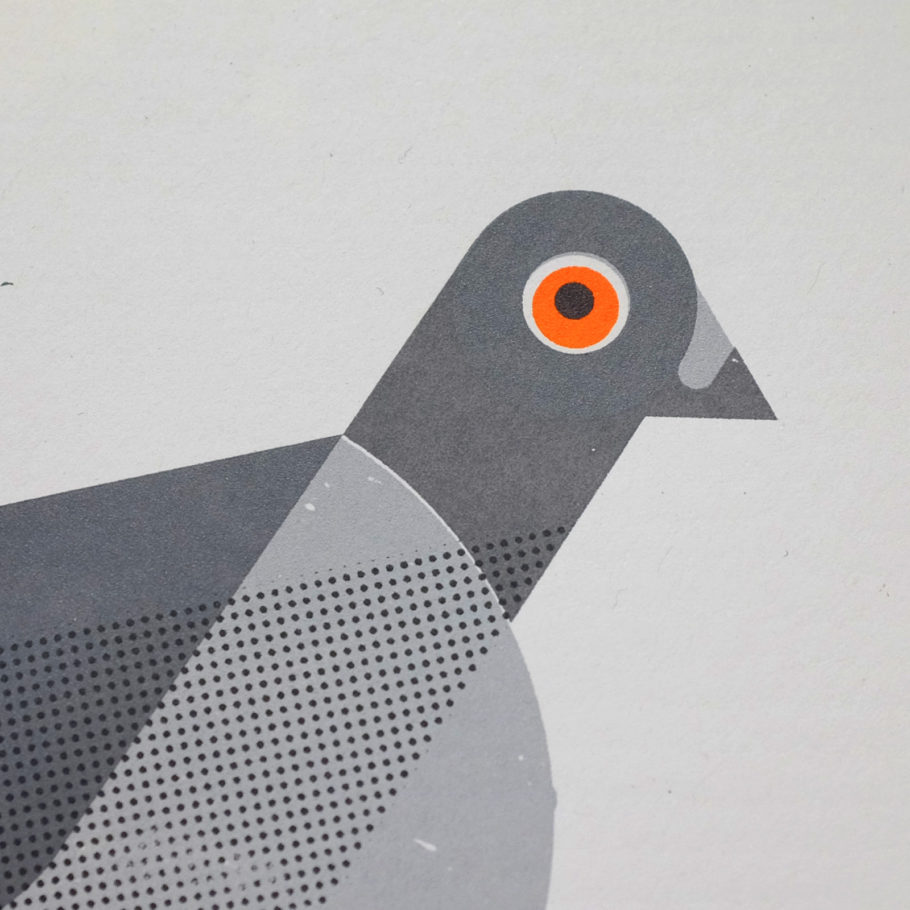 Pigeon Print by Things by us