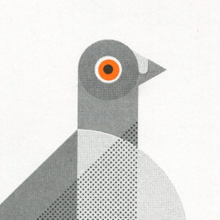Geometric Pigeon, Minimal Art Print by Things by us