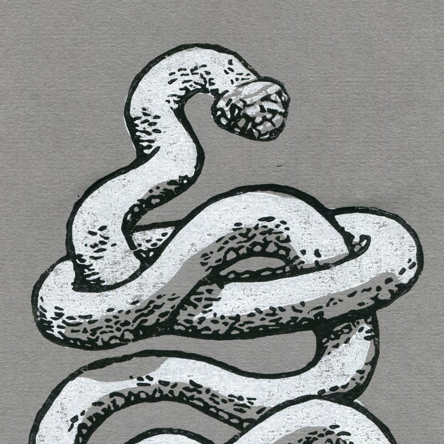 close crop of a snake linocut print on grey paper - Things by us