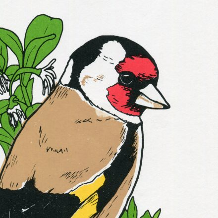 Close-up Goldfinch Art print by Things by us