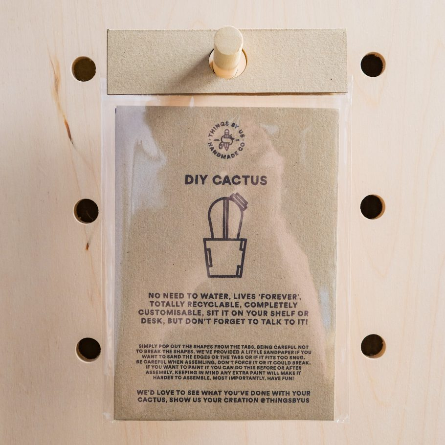 Cactus Ornament Packaging